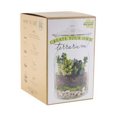 Syndicate Home & Garden DIY terrarium kit