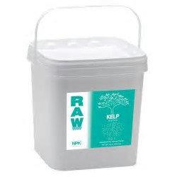 Raw Kelp 10 lb