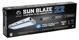 Sun Blaze T5 HO 22 - 2 ft 2 Lamp - 120 Volt