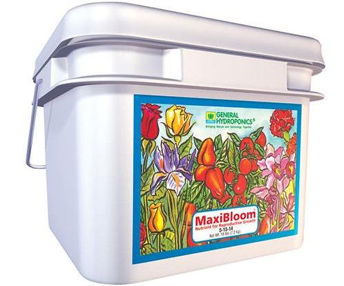 GH MaxiBloom, 16 lb