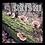 Thumbnail: Reishi Outdoor Mushroom Log Kit