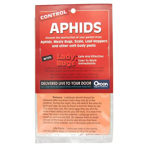 Control Aphids with LadyBugs