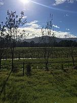 Beautifulview1.jpg