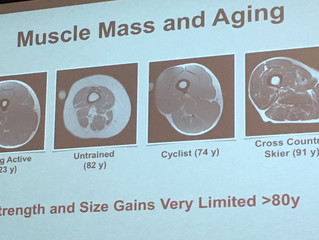 The Secret to Ageing & Muscle Mass