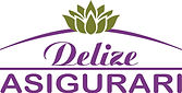 logo delize.jpg