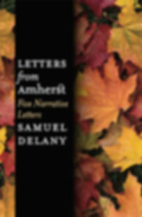 WUP DELANY LETTERS COVER.jpg