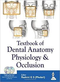 Dental Anatomy.jpg