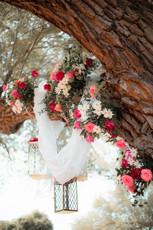 Flower Tree, Lanterns, Island Proposal, Gorgeous, Flower Draping, Daisys, Roses