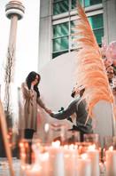 Proposal, Love, Engagement, Decor, Romantic, Pampas, Candles, City, View, Backdrop