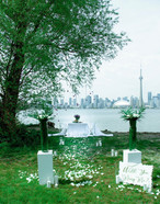 Island, Cn Tower, Water, River, Lake, Flowers, Candles, Champagne, Wine, Food, Hors D'oeuvres, Appitizer, Beautiful, Nature, Proposal
