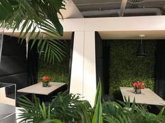 Grand Opening, Tropical, Greenery
