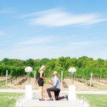 Proposal, Love, Engagement, Decor, Aisle, Helicopter, Niagara Falls, Winery, Beautiful