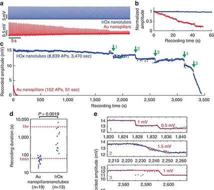 15. Iridium oxide nanotube electrodes for sensitive and prolonged intracellular measurement of action potentials