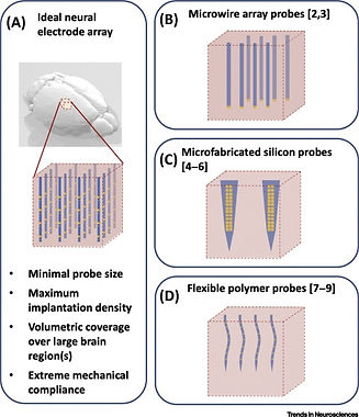 31. Spikes to Pixels: Camera Chips for Large-scale Electrophysiology
