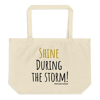 shine-during-the-storm--_mockup_Front_Fl