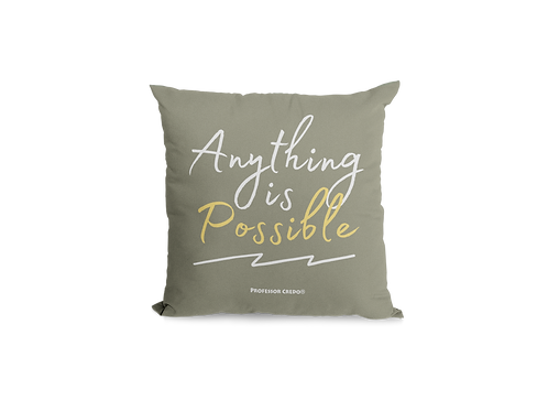 ANYTHING IS POSSIBLE PILLOW