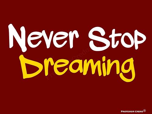 Never Stop Dreaming Art