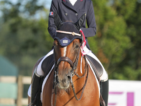 CDI3* JIVA HILL : LE DRESSAGE SUR SON 31 !