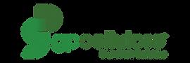 2021_GP Cellulose™ Brunswick Logo Color.png