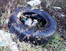 web_tire.JPG