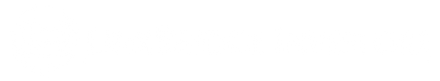 Logo - LinkBridge (white).png
