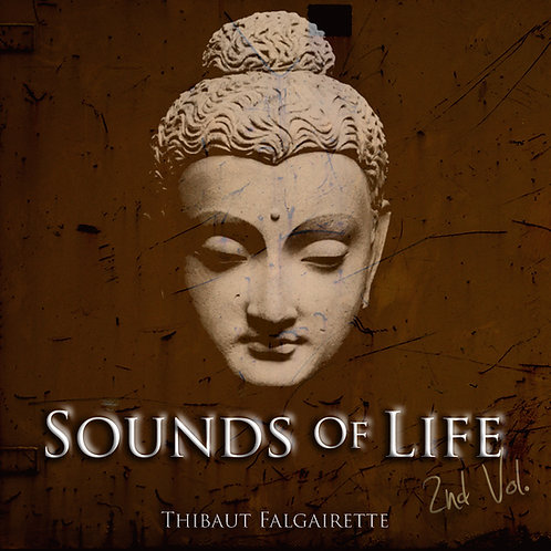 Sounds Of Life, 2nd Vol.