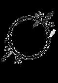 Logo Thibaut Falgairette 2.png