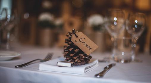 Capitol Reef wedding pine cone