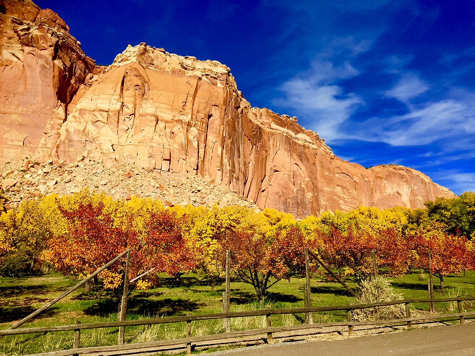 Fall in Capitol Reef