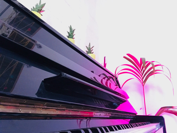 Communal Piano