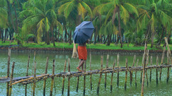 Chasing the Monsoons: Top 5 States in India to Enjoy the Rain