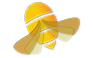 HoneyLogo.png