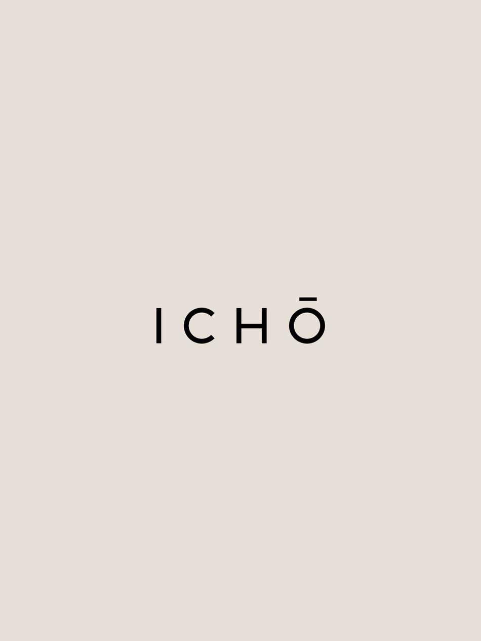 Icho_identity3.jpg
