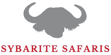 Grey silhouette of Cape Buffalo with Sybarite Safaris stated below; specialists in eco-friendly holidays in East Africa.