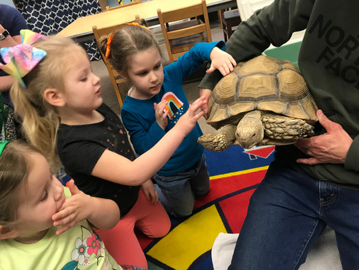 We got to meet a tortoise!