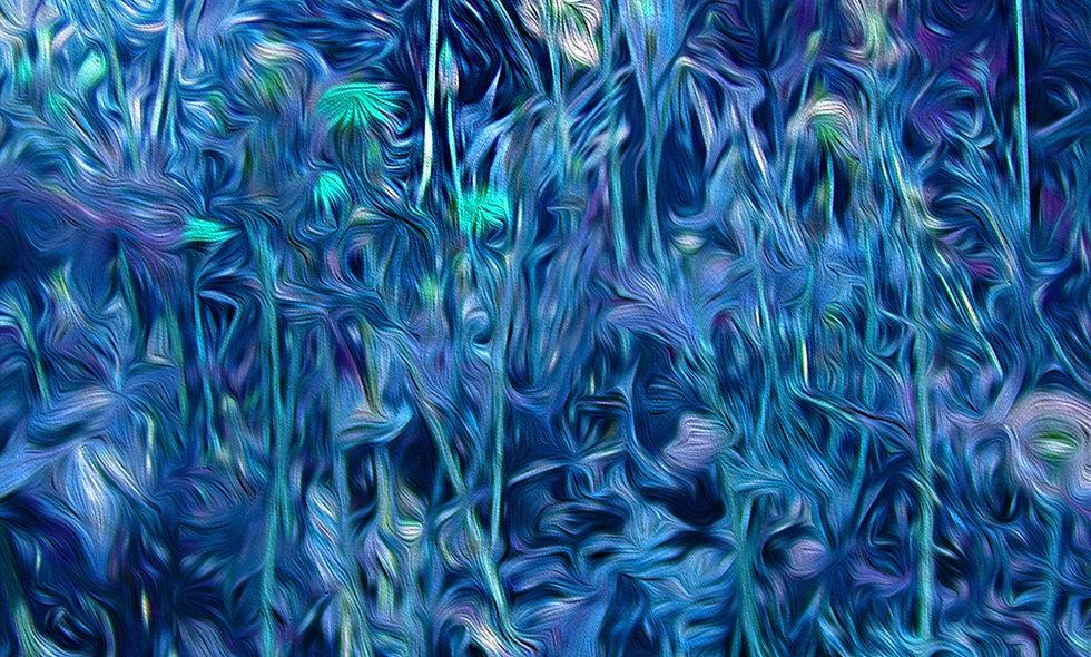 Pedernales Spring Blue