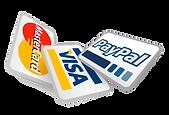 paypal logo onesies