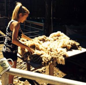 Katie rolling wool
