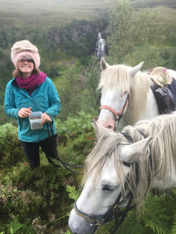 Iona and the horses helping out