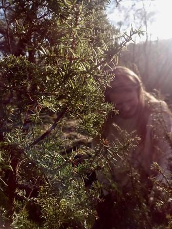Katie juniper picking