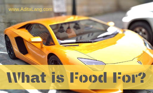 What is food for?