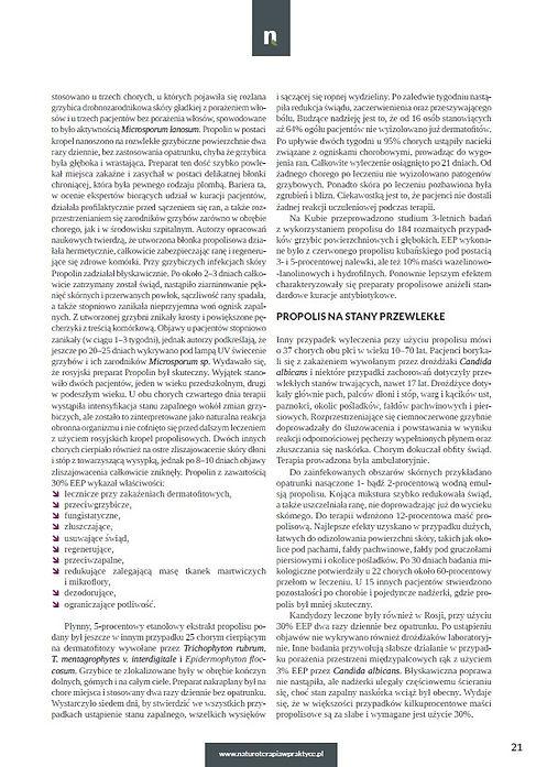 propolis 8.jpg