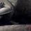Thumbnail: MISSA BREVE monochrome