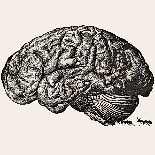 jessica moritz, epilepsy awareness, surrealist drawing, artivive art, ink dark surrealism, brain illustration, augmented reality art, israeli illustration,רישומים בשחור לבן