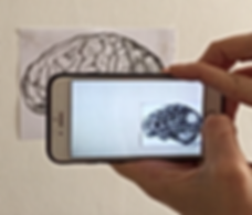 artivive, AR, aumented reality, drawing, Art and tech, israeli art, tel aviv art, jessica moritz, augmented reality installation, brain, anatomy, tlv art, art is real