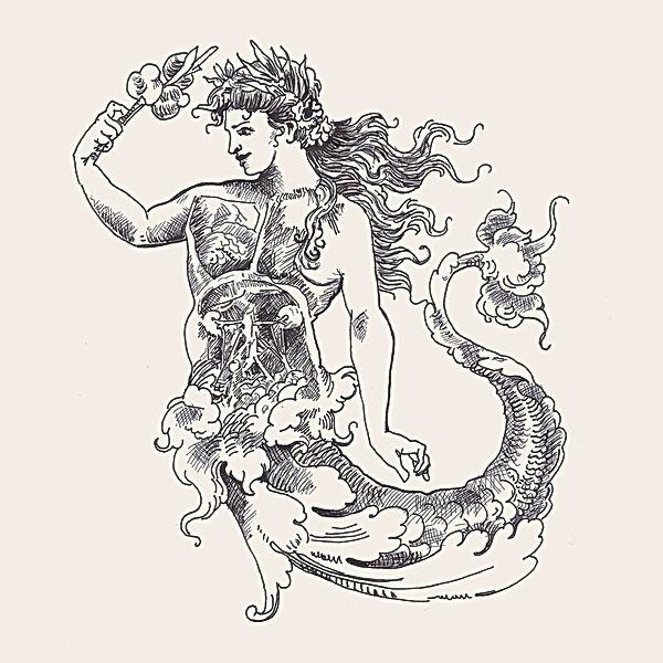 jessica moritz, anatomy of an artist, surrealism illustration, pcos awareness, feminist art, mermaid symbol, pcos illustration, women illustration, inner self, women with pcos