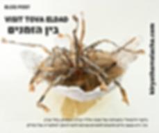 Tova eldad, tel aviv artists house, jpeg,img, exhibition tlv, art tlv, israeli contemporary art.png