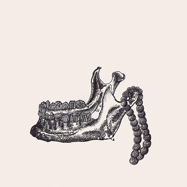 jessica moritz, anatomy of an artist, surrealism drawing, tel aviv ink, gems drawing, israeli art,jaw illustration, bones drawings, allegory illustration