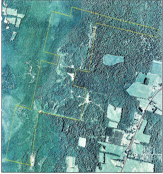 SRLT Fowler Bog2.jpg
