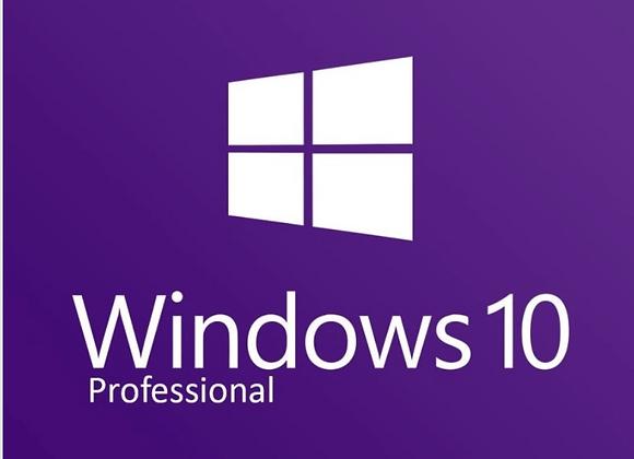 Windows 10 Professional Upgrade (Download)